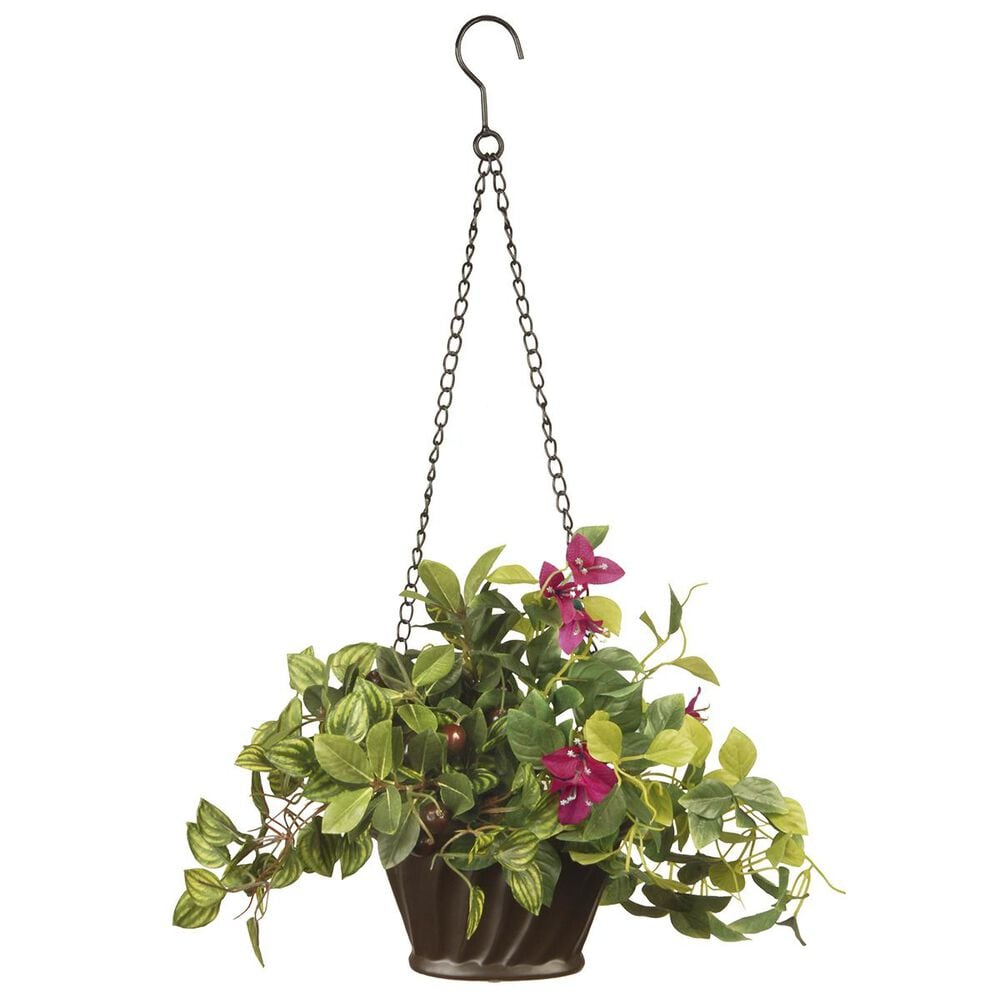 """National Tree 10"""" Assorted Hanging Plant, , large"""