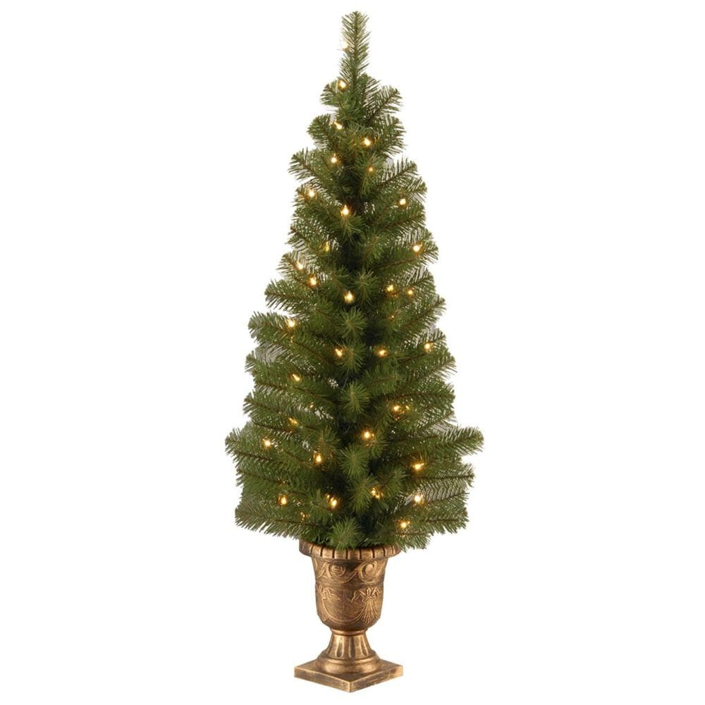 """National Tree 4"""" Montclair Spruce Entrance Tree with 50 White Lights, , large"""