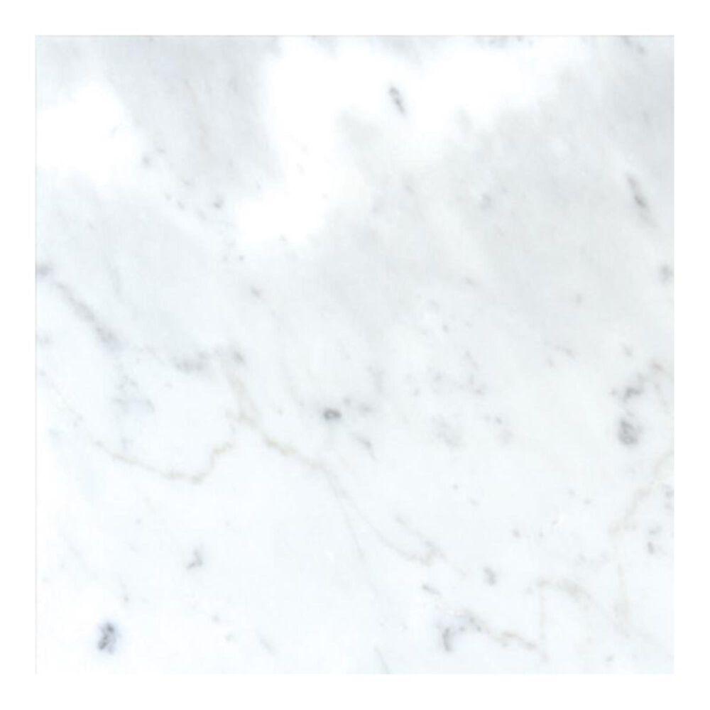 "MS International Carrara White 12"" x 12"" Natural Stone Tile, , large"