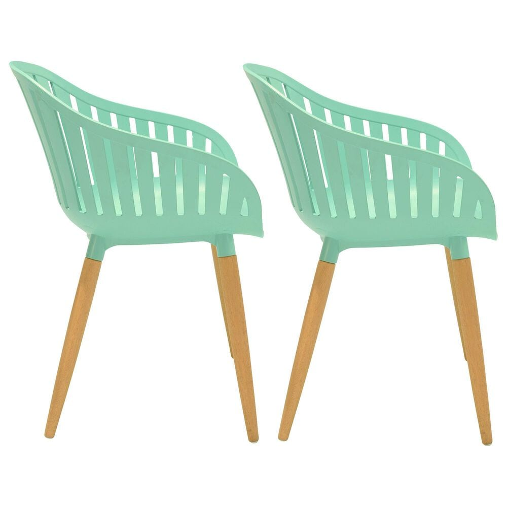 Blue River Nassau Patio Dining Chair in Light Green/Eucalyptus (Set of 2), , large