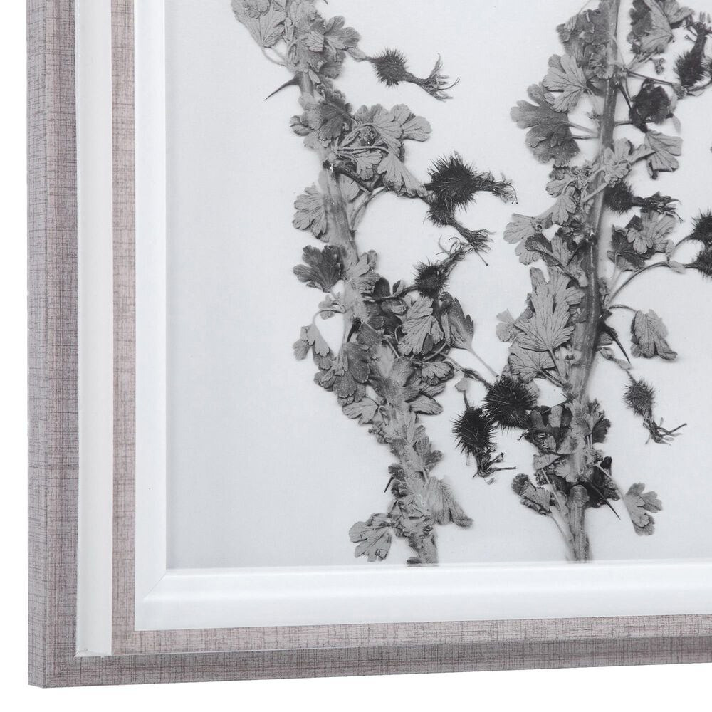 Uttermost Contemporary Botanicals Framed Prints (Set of 12), , large