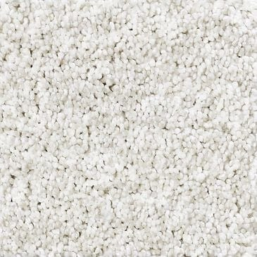 Philadelphia Foundations Take The Floor Tonal II Carpet in Orion, , large