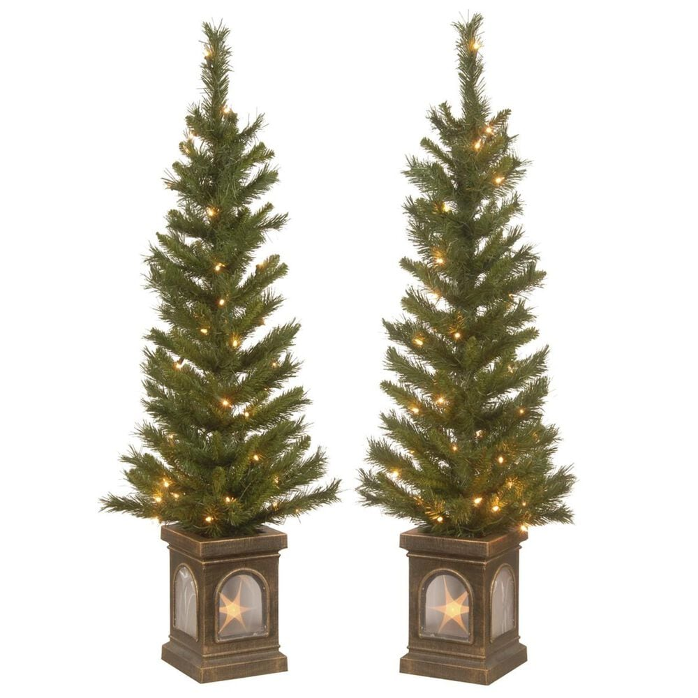 """National Tree 4"""" Lehigh Valley Pine Entrance Tree with 50 White Lights (Set of 2), , large"""