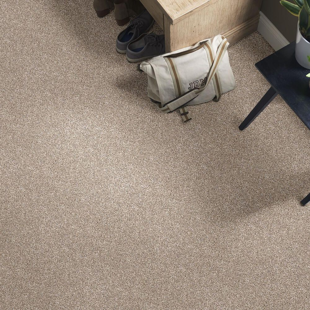 Philadelphia Simply the Best After It II Carpet in Neutral Ground, , large