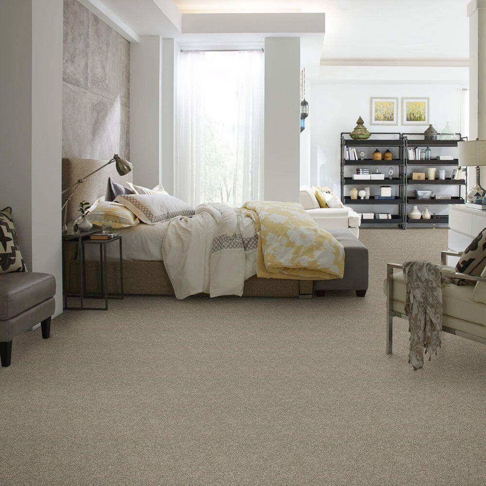 Philadelphia Shake It Up Carpet in Owl, , large