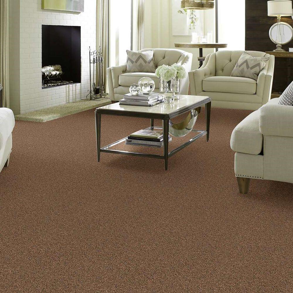 Philadelphia Simply Yours Remember Me Carpet in Pecan Praline, , large