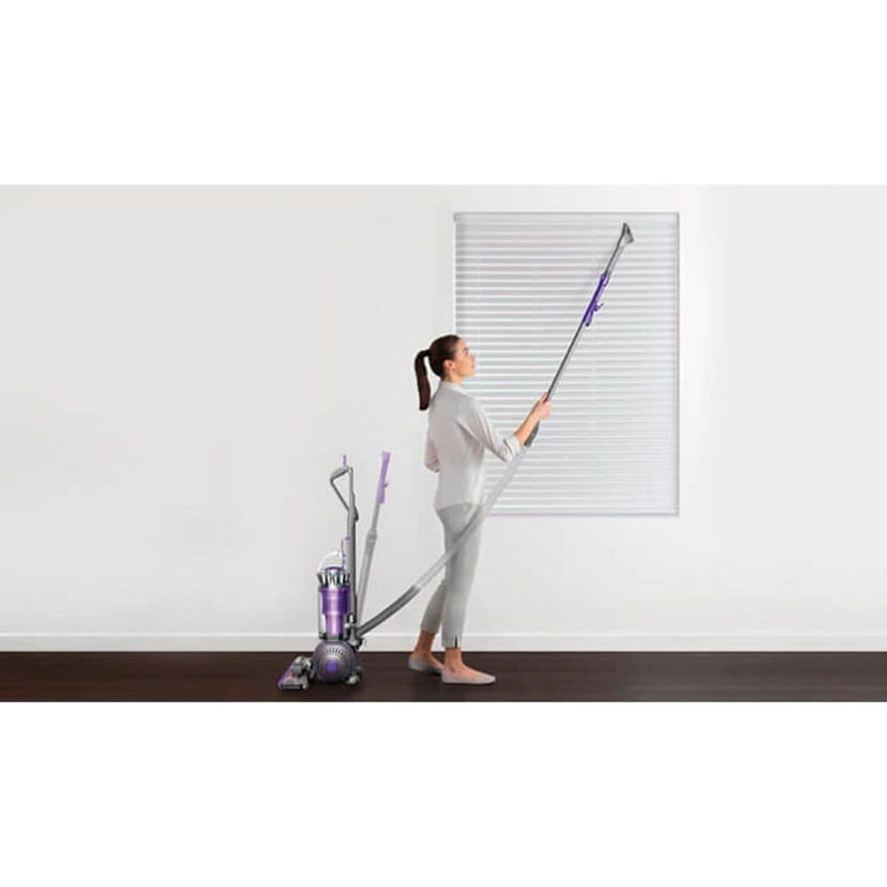 Dyson Ball Animal 2 Upright Vacuum in Purple, , large