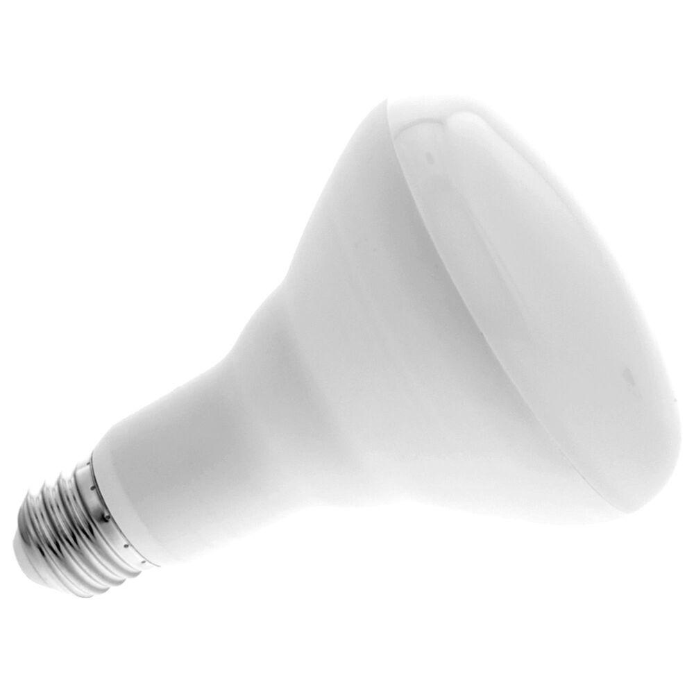Nexxt BR30/E26 Smart Wifi LED 110V Floodlamp in White, , large