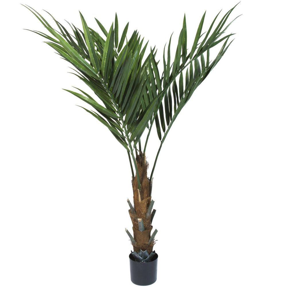 "Timberlake Pure Garden 60"" Kentia Palm Tree, , large"