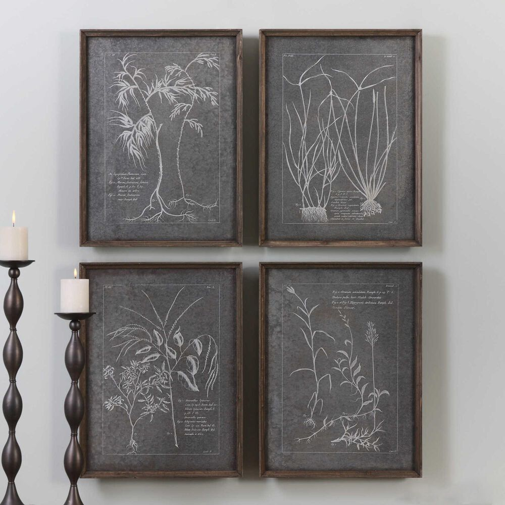 Uttermost Root Study Print Art (Set of 4), , large