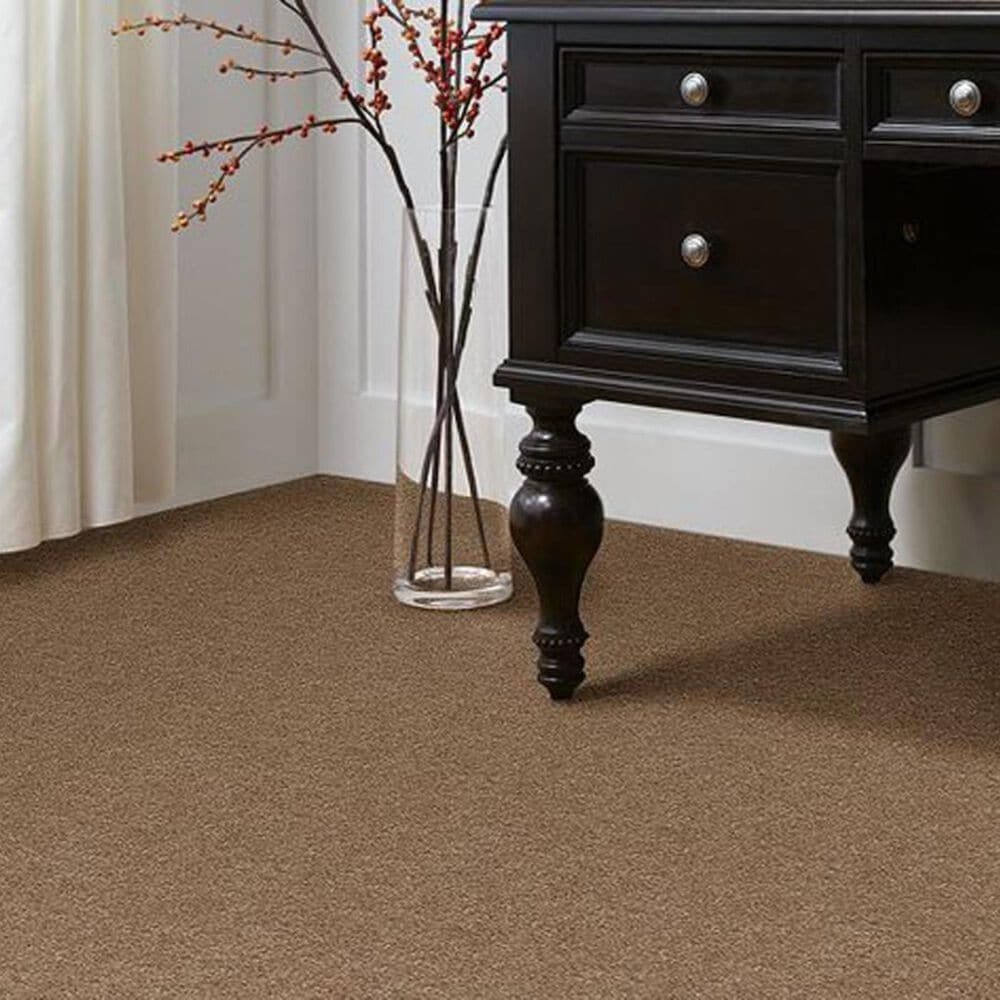 Anderson Tuftex Star Power Carpet in Hazelnut, , large