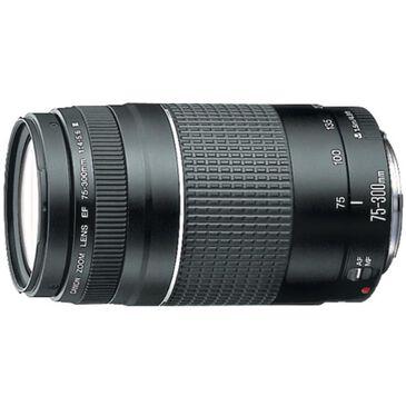 Canon EF 75-300mm f/4-5.6 III Telephoto Zoom Lens, , large