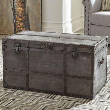 Signature Design by Ashley Amsel Storage Trunk in Gray and Brown, , large
