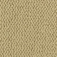 Swatch of Brown Pattern and Loop Style Carpet