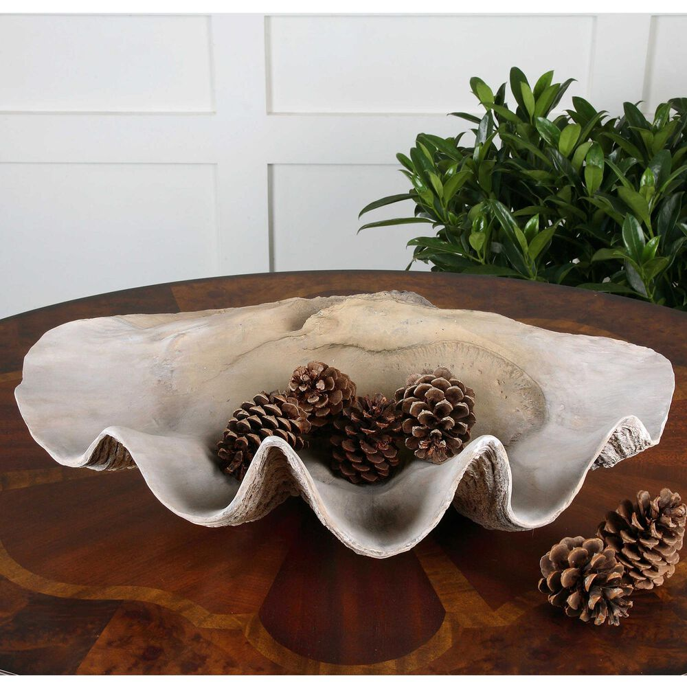 Uttermost Clam Shell Bowl, , large