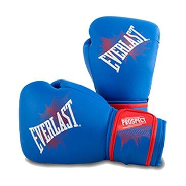Everlast Prospect Youth Training Gloves, , large