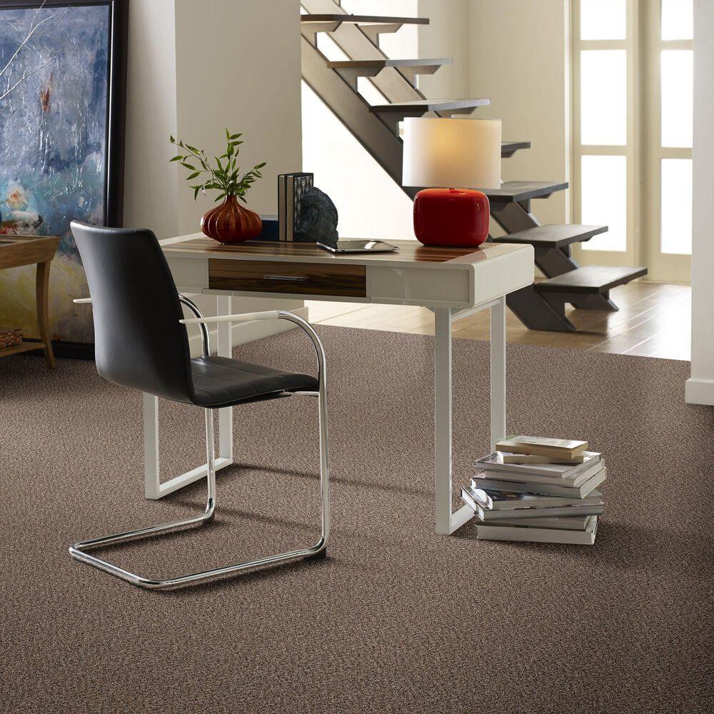 Philadelphia Mixed Essentials Carpet in Primitive, , large