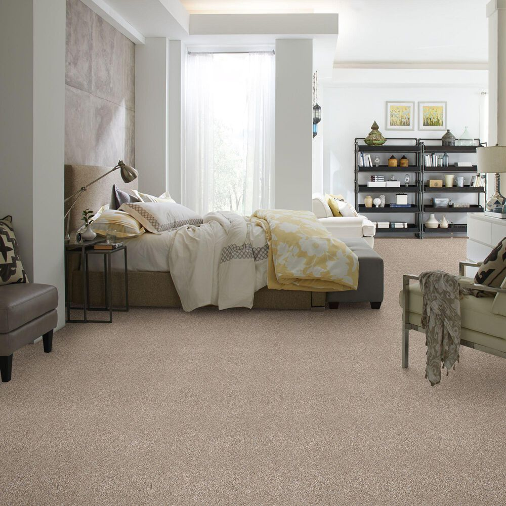 Philadelphia Simply the Best After It I Carpet in Neutral Ground, , large