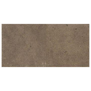 """Dal-Tile Industrial Park Chestnut Brown 12"""" x 24"""" Porcelain Tile, , large"""