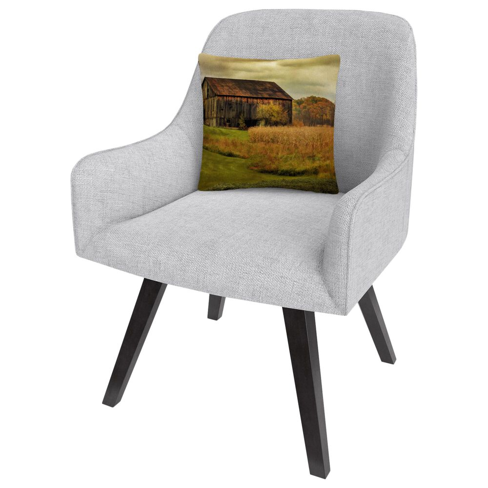Timberlake Lois Bryan 'Old Barn on Rainy Day' 16 x 16 Decorative Throw Pillow, , large