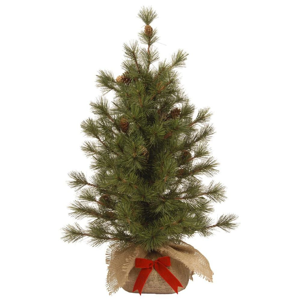 "National Tree 3"" Bristle Cone Pine Tree, , large"