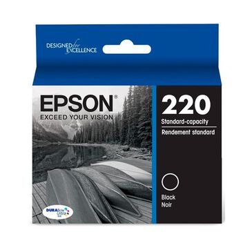 Epson Standard Capacity Black Ink Cartridge, , large