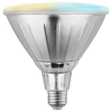 Nexxt PAR38/E26 Outdoor Flood Lamp Wifi Bulb in Silver, , large