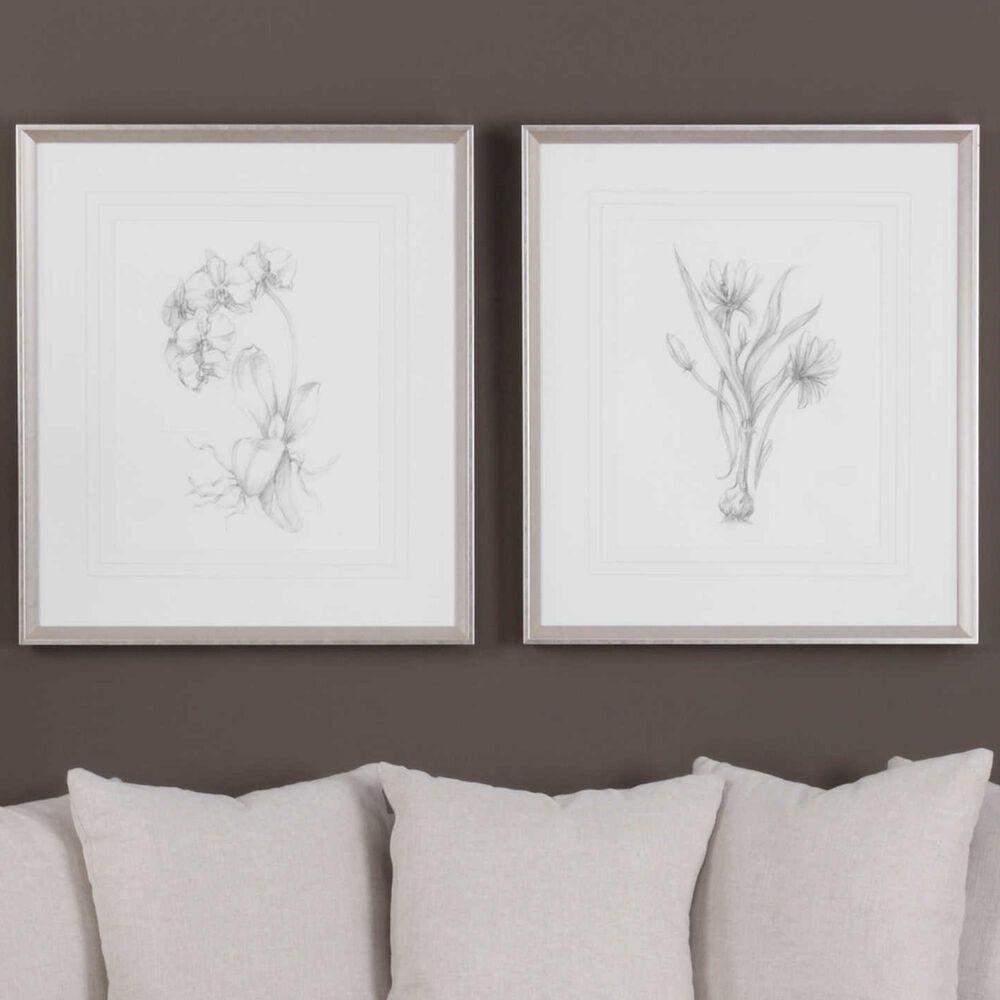 Uttermost Botanical Sketches Framed Prints (Set of 2), , large