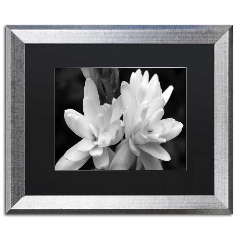 """Timberlake 16"""" x 20"""" Tuber Rose in Black and White Art in Black Matting and Silver Frame, , large"""