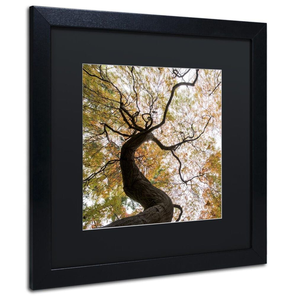 """Timberlake 11"""" x 11"""" Under a Japanese Maple 2 Art in Black Matting and Black Frame, , large"""