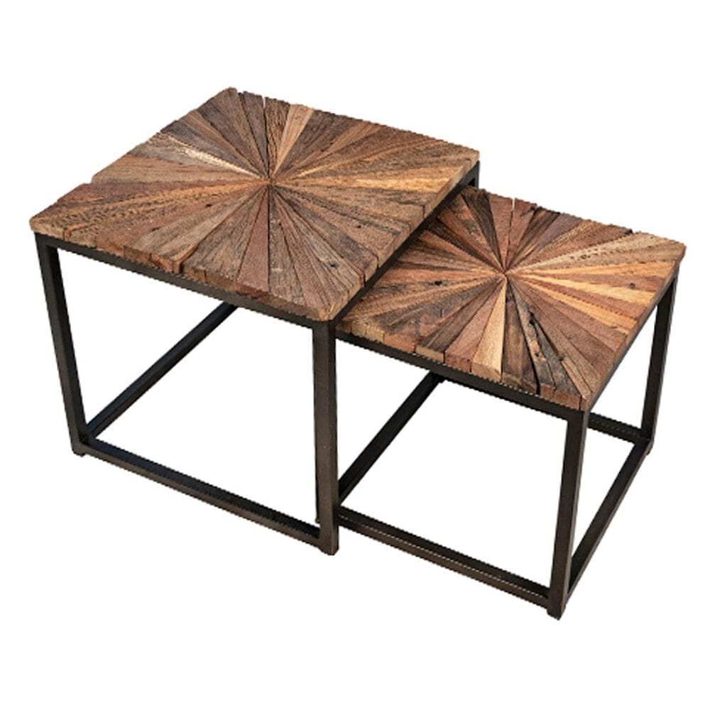 Blue Sun Designs Alonzo End Table in Natural and Black  (Set of 2), , large