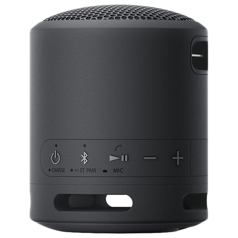 Sony Portable Wireless Speaker in Black, , large