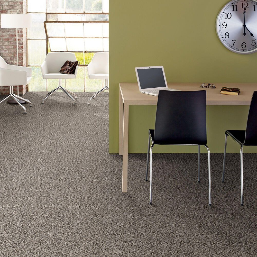 Philadelphia Mixed Essentials Carpet in Dove Feather, , large