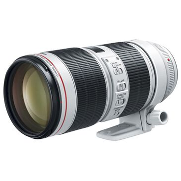 Canon EF 70-200mm f/2.8L IS III USM Telephoto Zoom Lens, , large