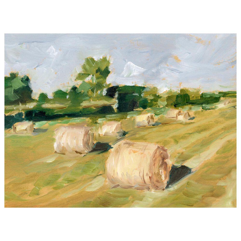 "Courtside Market Hay Field II 30"" x 40"" Canvas Wall Art, , large"