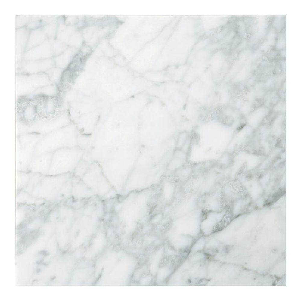 "Emser Bianco Gioia Polished 24"" x 24"" Natural Stone Tile, , large"