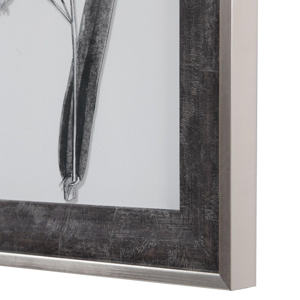 Uttermost Classic Botany Framed Prints (Set of 8), , large