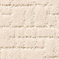 loop or patterned carpet