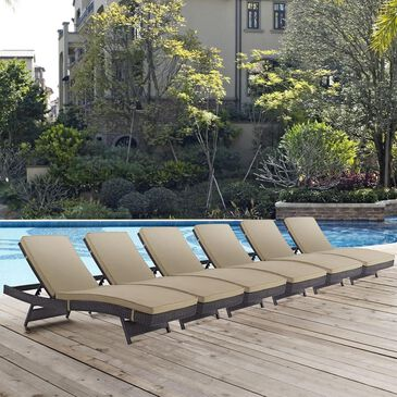 Modway Convene Outdoor Patio Chaise in Espresso and Mocha - Set of 6, , large