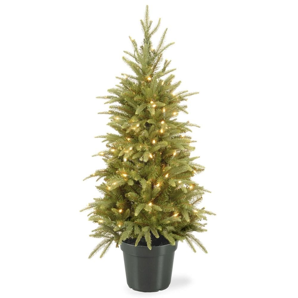 """National Tree 4"""" Weeping Spruce Wrapped Tree with 100 White Lights, , large"""