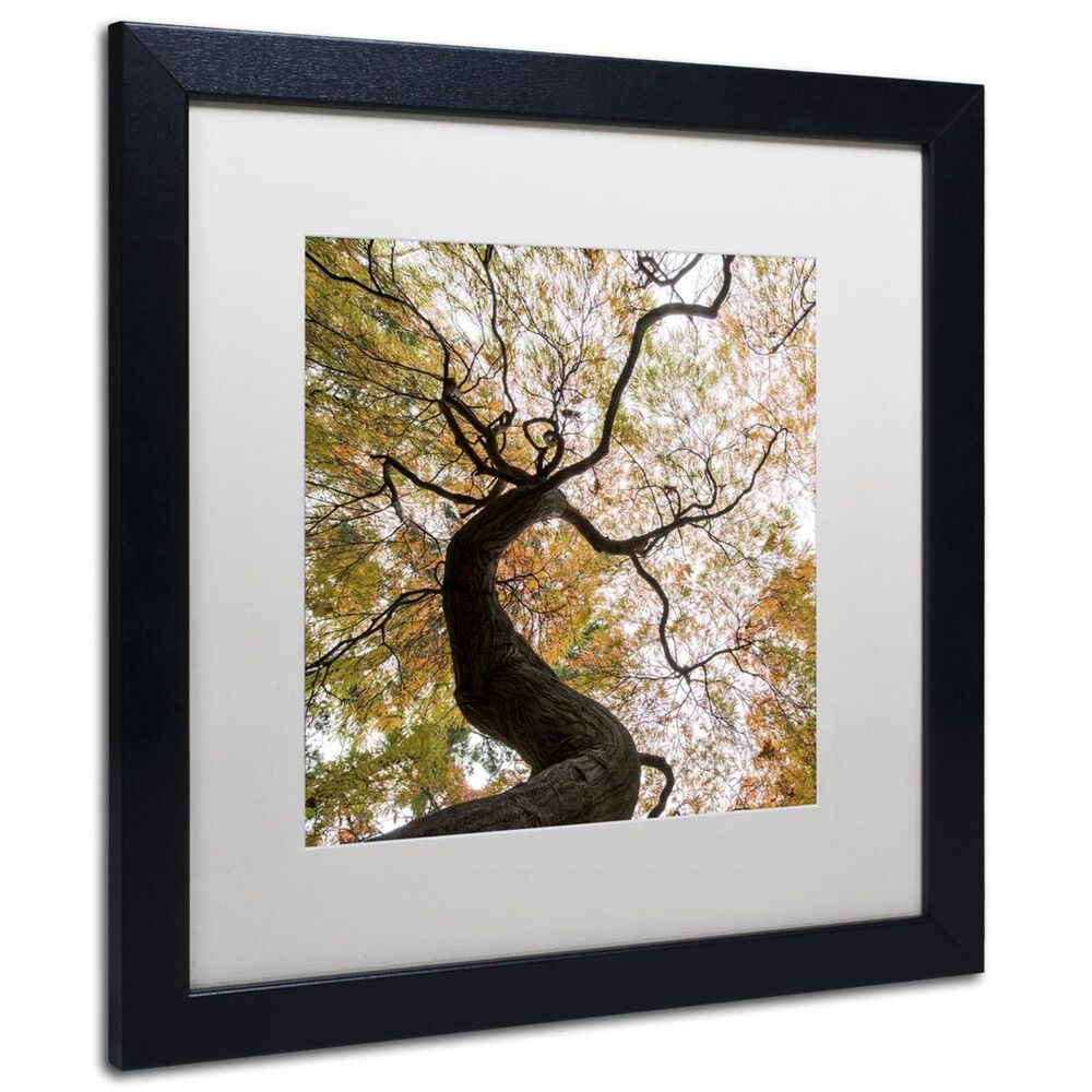"""Timberlake 16"""" x 16"""" Under a Japanese Maple 2 Art in White Matting and Black Frame, , large"""