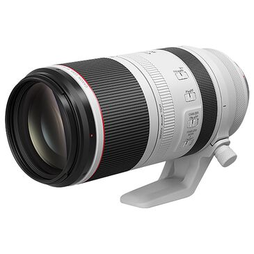 Canon RF 100-500mm f/4.5-7.1 L IS USM Telephoto Lens in White, , large