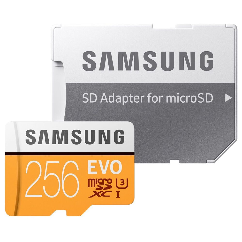 Samsung 256GB EVO microSDXC Memory Card, , large
