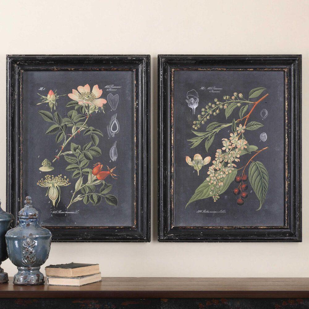 Uttermost Midnight Botanicals Wall Art (Set of 2), , large