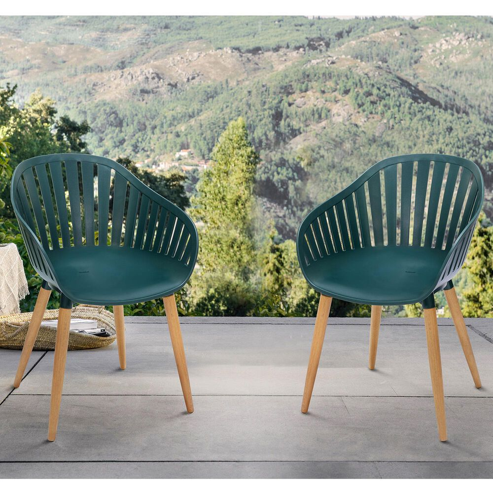 Blue River Nassau Patio Dining Chair in Green/Eucalyptus (Set of 2), , large