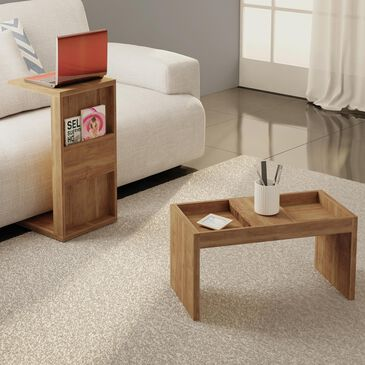 Dayton Marine 2-Piece Accent End Table & Coffee Table in Nature, , large