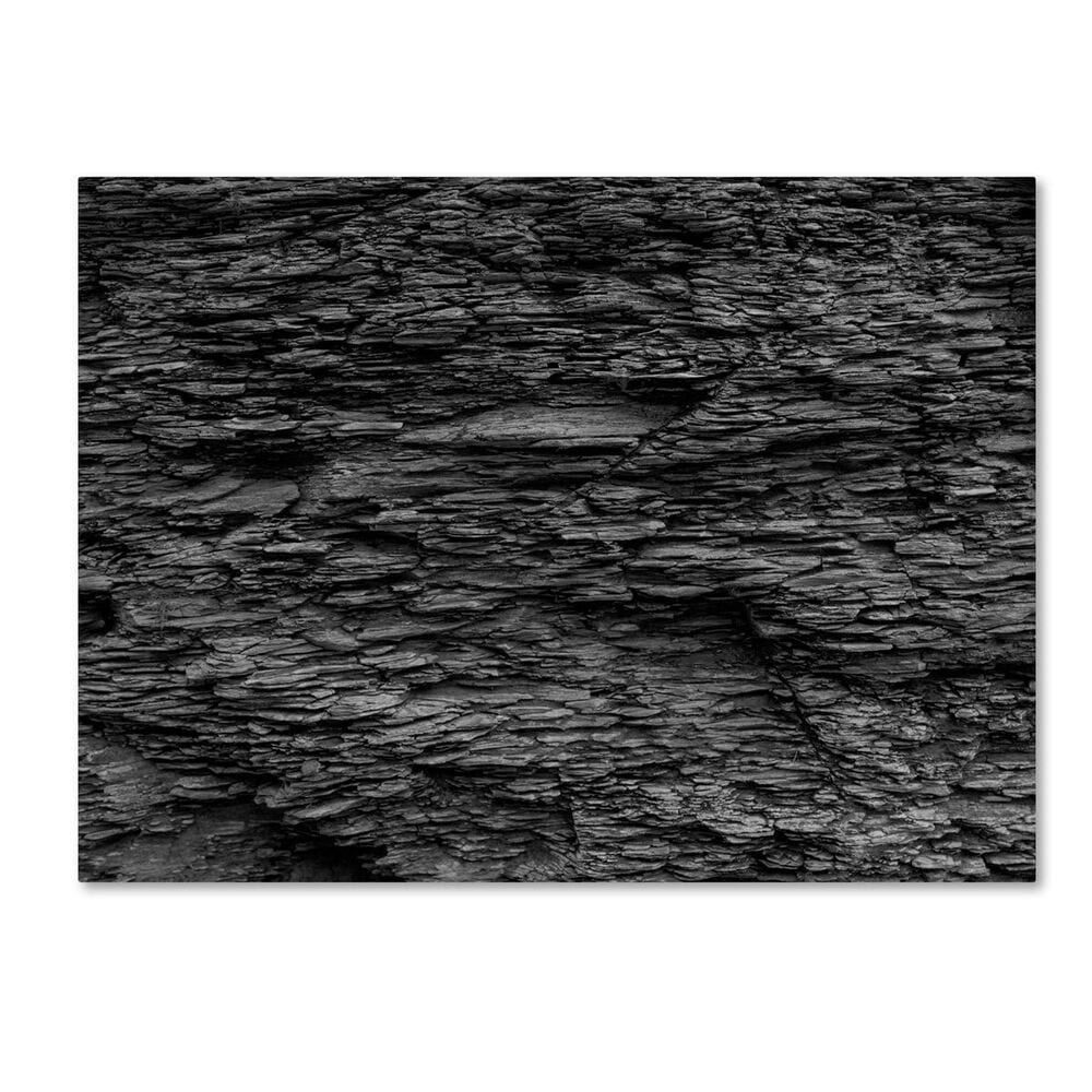 """Timberlake 35"""" x 47"""" Shale Abstract in Black and White Canvas Art, , large"""