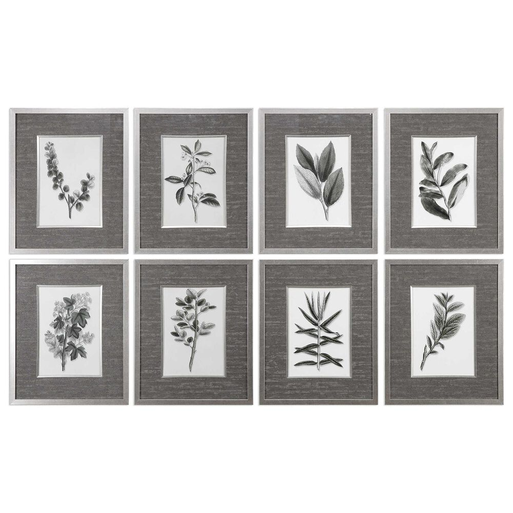 Uttermost Sepia Leaves Prints (Set of 8), , large