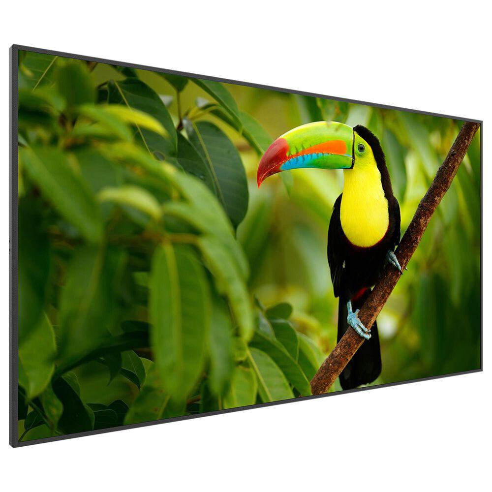 "Planar 43"" LED Planar Simplicity Series 4K SL4364K Display, , large"