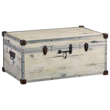 Tiddal Home Frankie Accent Trunk in Rustic Bohemian, , large